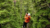 Juneau Shore Excursion: Douglas Island Zipline Tour from Juneau, Juneau, Ports of Call Tours