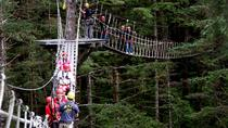 Ketchikan Shore Excursion: Rainforest Canopy and Zipline Adventure, Ketchikan, Ziplines