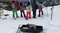 Snowshoe Lake Tahoe Tour, Lake Tahoe, Ski & Snow