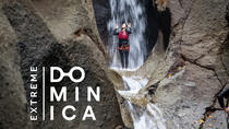 Canyoning Experience, Dominica, Climbing