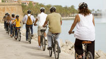 Mallorca Shore Excursion: Palma Bike Tour Including Palma Cathedral and Parc de la Mar, Mallorca, ...