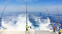 Private Tour: Deep-Sea Fishing Trip from Dubai, Dubai, Private Sightseeing Tours
