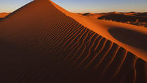 Red Dune Desert Safari with BBQ, Sandboarding and Camel Ride, Dubai, 4WD, ATV & Off-Road Tours