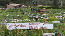 FLOWER FARM & ARVÍ PARK TOUR, Medellín, Private Sightseeing Tours
