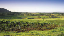 Hunter Valley Food and Wine Tasting Day Tour from Sydney, Sydney, Day Trips