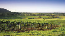 Hunter Valley Food and Wine Tasting Day Tour from Sydney Including Optional Hunter Valley Gardens, ...