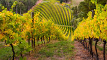 Private Adelaide Hills Wine Region Tour, Adelaide, Cultural Tours