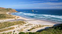 Dunedin Shore Excursion: Small-Group Tour of Dunedin and the Otago Peninsula, Dunedin & The ...