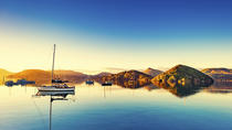 Dunedin Shore Excursion: Small-Group Tour of Dunedin, Dunedin & The Otago Peninsula, Ports of ...