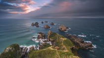 Private Tour: Dunedin to the Catlins, Dunedin & Otagohalvøen
