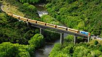 Taieri Gorge Railway and the Otago Peninsula Day Trip from Dunedin, Dunedin & The Otago ...