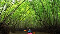 Mangrove Kayak, Krabi, Kayaking & Canoeing