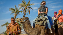 Desert and Palm Grove Camel Ride from Marrakech Including Moroccan Tea and Snack, Marrakech, ...