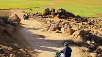 Marrakech Desert and Palm Grove Quad Bike Tour, Marrakech, Full-day Tours