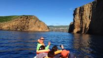 Boat Trip to Goat Islets, Terceira