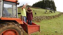 Rural Morning, Terceira, Cultural Tours