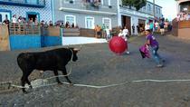 Traditional Bullrun, Terceira, Cultural Tours