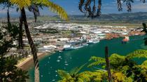 Tauranga Shore Excursion: Mt Drury and Moturiki Island Walking Tour including Mount Hot Pools...