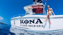 Kona Dolphin Experience and Reef Snorkel, Big Island of Hawaii, Day Cruises