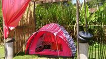 Kintamani, Lakeside Overnight Camping, BBQ night, Lake Fun Fishing, Ubud, Hiking & Camping