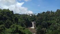 Tegenungan Waterfall, Ubud Monkey Forrest, Art Market, Tegalalang Rice Terrace, Ubud, Market Tours