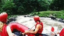 Ubud Rafting Tour, Ubud, 4WD, ATV & Off-Road Tours