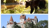 Meet the Bears & Visit Dracula Castle Day Tour from Bucharest, Bucharest, Attraction Tickets