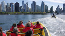 Vancouver Harbour Zodiac Sightseeing Cruise, Vancouver, Dolphin & Whale Watching