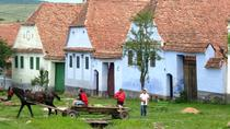 Best of Transylvania: castles, villages & fortifications (3 days, from Cluj), Cluj-Napoca,...