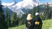 Mount Rainier Premium Small Group Tour Gourmet Lunch Included, Seattle, Day Trips