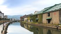 Private Sapporo and Otaru Sightseeing with Licensed Guide, Sapporo, Cultural Tours