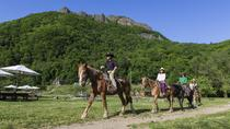 Sapporo Horseback-Riding Tour, Sapporo, Horseback Riding