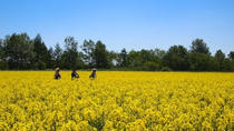 Stroll with Picnic Lunch with Fields Guide in the Real Production Farm, Hokkaido, Food Tours
