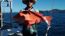 Full day share Fishing, Airlie Beach, Day Cruises