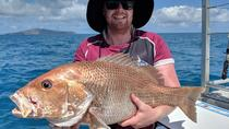 Half Day Share Fishing, Airlie Beach, Day Cruises