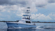 Deep Sea Fishing Half Day, Freeport, 4WD, ATV & Off-Road Tours