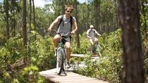 Freeport Bike Tour to Lucaya's Garden of the Grove, Freeport, Bike & Mountain Bike Tours