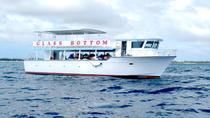 Freeport Glass-Bottom Boat Cruise, Freeport