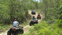 Grand Bahama ATV Tour from Freeport, Freeport, 4WD, ATV & Off-Road Tours