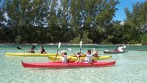 Grand Bahama Island Jeep and Kayak Adventure from Freeport, Freeport, null
