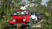 Jeep & Kayak, Freeport, 4WD, ATV & Off-Road Tours