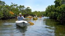 Kayak Only, Freeport, Kayaking & Canoeing