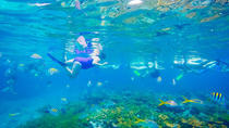 Reef Snorkel & Shopping, Freeport, Shopping Tours