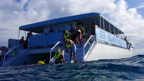 Snorkel Sea Adventure, Freeport, 4WD, ATV & Off-Road Tours
