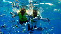 Snorkeling, Freeport, 4WD, ATV & Off-Road Tours