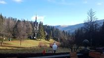 DRACULA'S CASTLE PELES CASTLE AND BRASOV DAY TRIP FROM BUCHAREST, Bucharest, Attraction Tickets