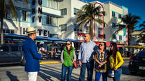 Private Luxury VIP Tour of South Miami, Wynwood, and the Design District, Miami, Cultural Tours