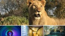 Lion Park, Maropeng and Sterkfontein caves, Johannesburg, Day Trips