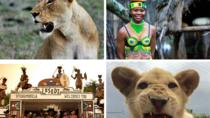 The Lion Safari Park and Lesedi Cultural Village, Johannesburg, Cultural Tours
