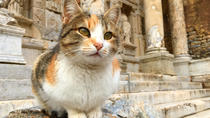 Ephesus Shuttle : Small Group Excursion to Ephesus and Temple of Artemis, Kusadasi, Ports of Call ...